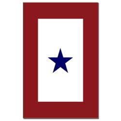 Blue Star Mother of American Service Flag